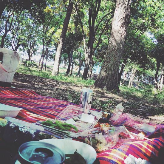 Good Times Picnic 大阪城 Sunny