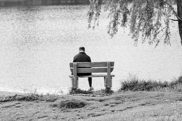 Rear view of man sitting on bench at lake