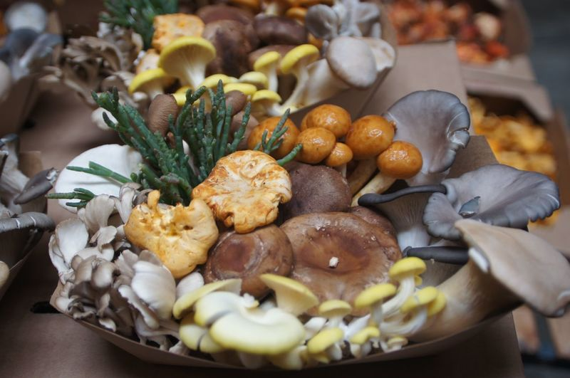 Abundance Close-up Cropped Day Focus On Foreground Food Freshness Indulgence Meal Mushroom_pictures Mushrooms Organic Ready-to-eat Selective Focus Serving Size Still Life Temptation Nature On Your Doorstep Naturephotography Fresh On Eyeem  Nature's Diversities