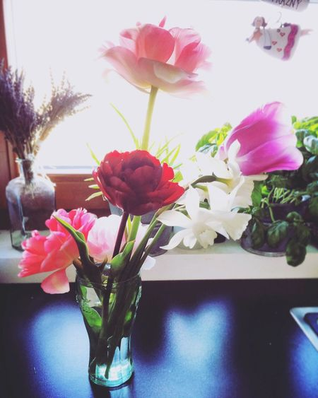 Enjoying tulips