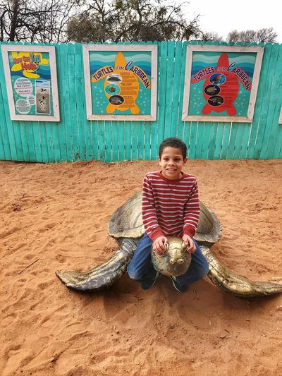 Riding the Golden Turtle Sand & Sea Playing Brass Sculpture Multicolors  Carribean Turtles Children Endangered Species Childhood Memories Full Length Front View Sitting Smiling Looking At Camera One Person Portrait People Happiness Day Outdoors