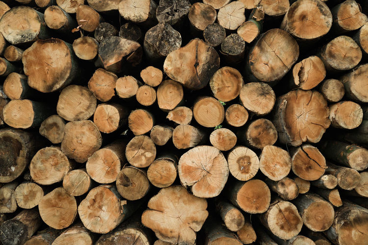 Forestry Industry Woodpile Backgrounds Stack Full Frame Fuel And Power Generation Heap Timber Wood - Material Log Pile Firewood Wood Tree Ring Tree Stump Tree Trunk