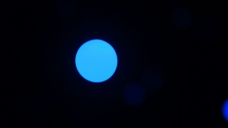 Where is the love Blue Light Bokeh Light Yayoi Kusama Love Is In The Air Black And Blue Mexico City Museo Rufino Tamayo