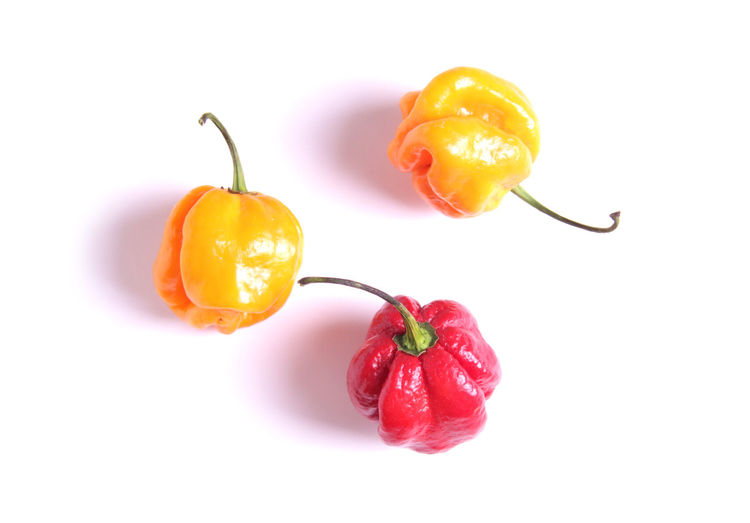 Hottest peppers on white background, Carolina reaper Chili Pepper Isolated Carolina Reaper Chili  Close Up Close-up Food Food And Drink Freshness Group Hottest Peppers Ingredient Isolated On White Orange Color Organic Paprika Pepper Peppers Picked Raw Food Red Ripe Studio Shot Vegetable White Background