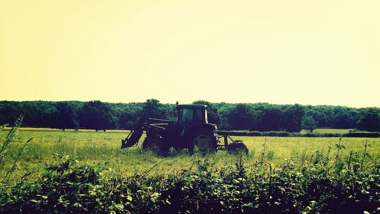 Landscape tractor