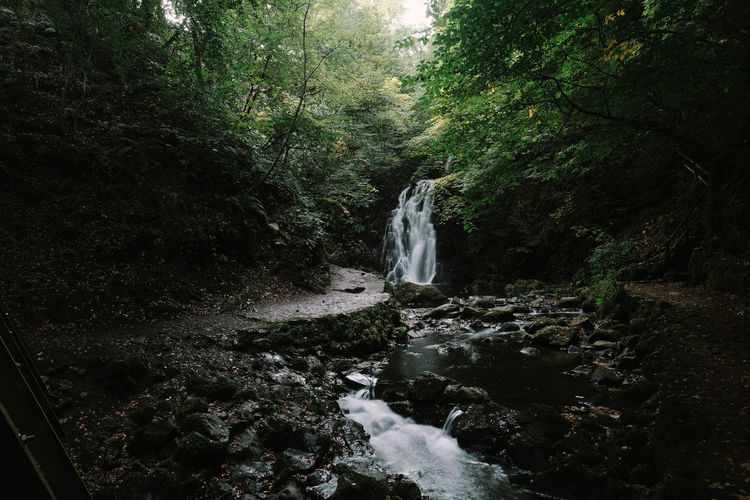 Ireland Ireland🍀 Land Landscape Tree Plant Water Forest Flowing Water Long Exposure Scenics - Nature Waterfall Motion Beauty In Nature Nature Blurred Motion Flowing Growth No People Environment Day Rock Outdoors Power In Nature Rainforest Stream - Flowing Water