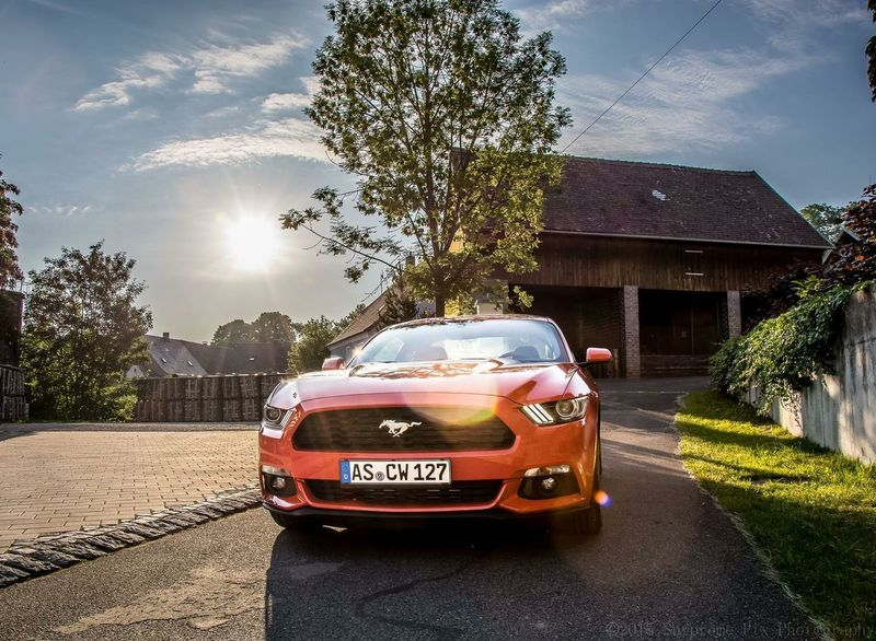 Ford Mustang Photooftheday Ford Mustang GT Fordmustangs Fordmustang CarFlowww Autoportrait Automotive Automotive Photography Nikon D7100