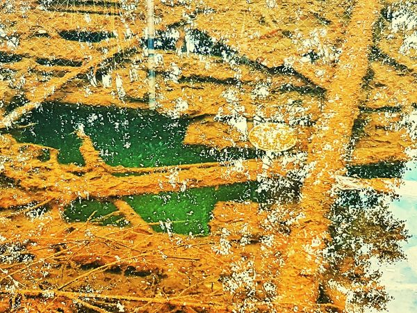 Something wet..hazardous. Multi Colored Close-up Abstract Backgrounds Rust Water Reflections Rusty Metal Rusty Things Rusty Rusty Surface Pool Of Water White Reflection Hazardous Hazardous To Your Health Poisionous Bad Water Basin Green Color