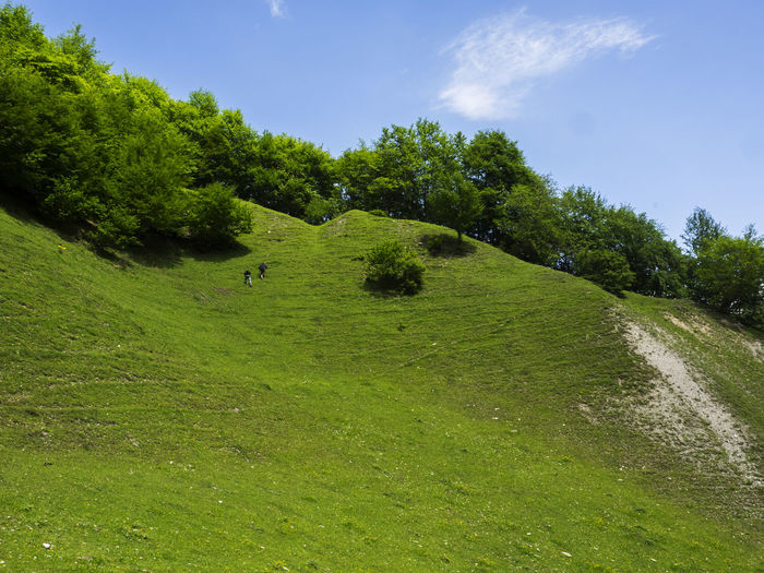 Two young men climb up the steep slope of a mountain covered with green grass Climb Up Young Animal Themes Beauty In Nature Covered Day Domestic Animals Golf Course Grass Green Color Landscape Mammal Men Mountain Nature No People Outdoors Rural Scene Scenics Sky Slope Steep Tree Two