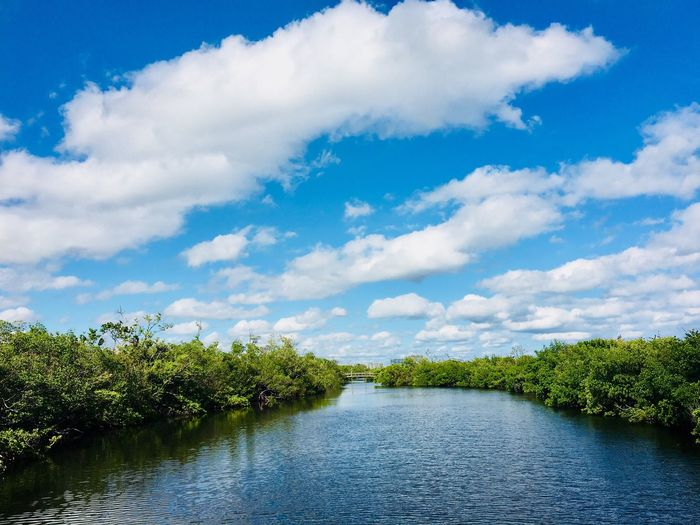 Tree Cloud - Sky Sky Nature Beauty In Nature Scenics Tranquil Scene Tranquility Day Water No People Lake Green Color Outdoors Growth