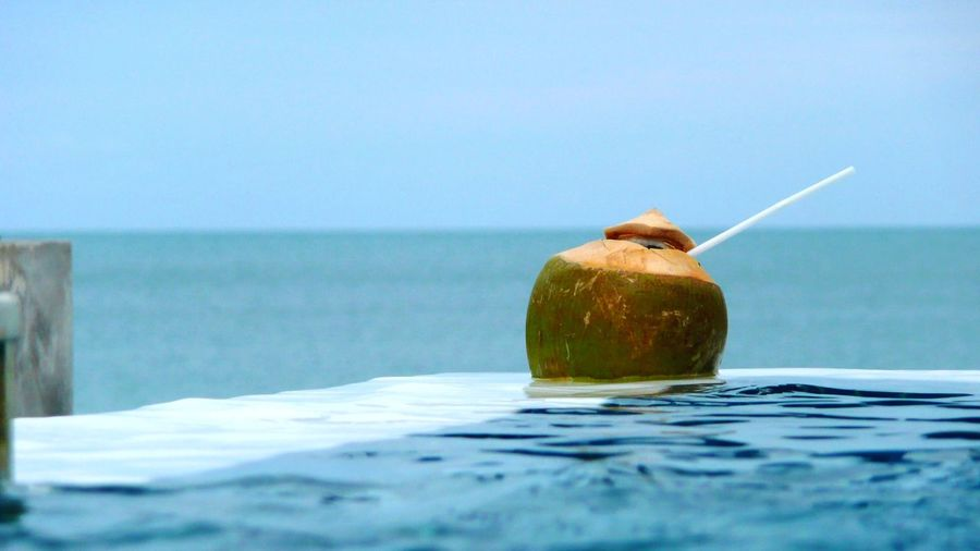 Coconut drink in swimming pool