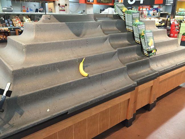 Lone banana Snowpocalypse