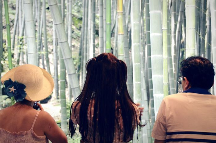 Focus On Foreground Japanese Culture Bamboo Forest Bamboo AMPt_community Shootermag Open Edit Tadda Community Traveling The Tourist From My Point Of View People Together Hidden Gems  People In Places People And Places