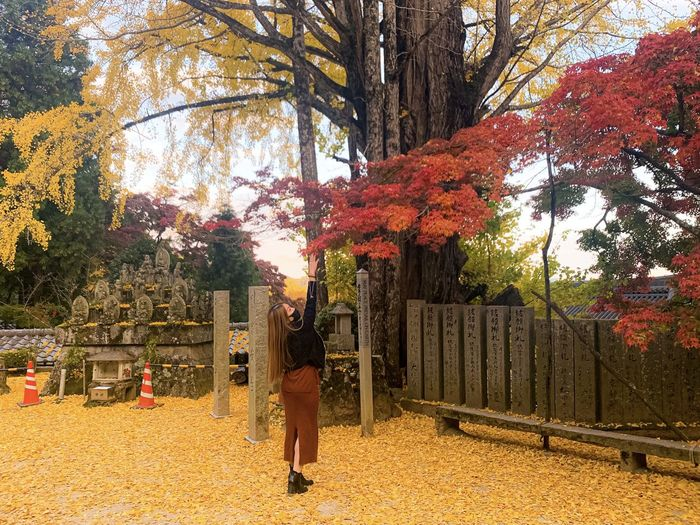 Full length of man standing by tree during autumn