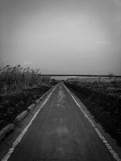 The Way Forward Diminishing Perspective Road Nature Outdoors Straight No People Field Tranquil Scene Landscape Clear Sky Day Scenics Tranquility Sky Beauty In Nature