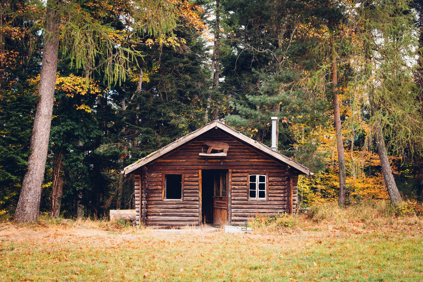 In The Woods Chalet Urbex Abandoned Architecture Forest Alpine Hut Wood - Material Wooden Wood Tree Plant Land Built Structure Building Exterior Nature Non-urban Scene No People House Landscape Day Tranquility Rural Scene Green Color Building Autumn WoodLand Outdoors Cabin Autumn Mood