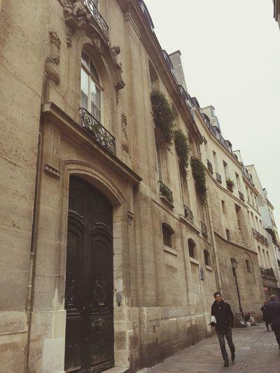 Paris street Architecture Building Exterior Built Structure Paris France City Streetphotography