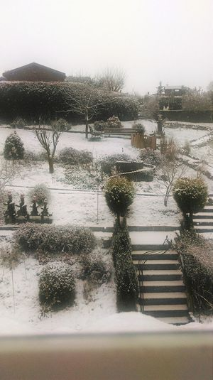 Winter Is Back Late Snow ❄ Cold Outside Garden Check This Out