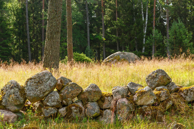 Stone wall on