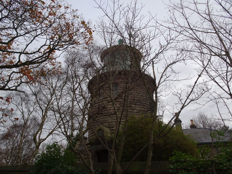 Lighthouse woodland History Autumn Day Beauty In Nature Leaves And Branches No People Autumncolors
