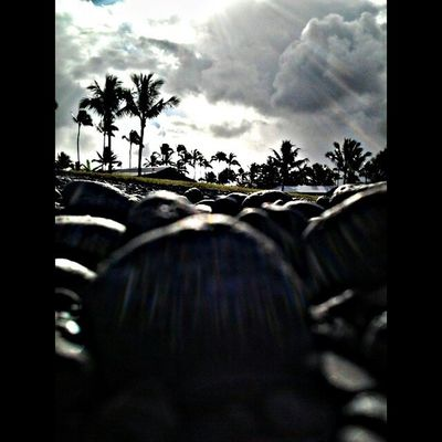 808love Beautifulxhi Myhome Lovemyhawaii HDR Hilo  Clouds Coconuttrees Cruzin  Instaphoto