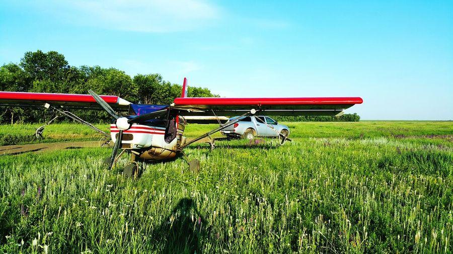 Biplane on grassy field