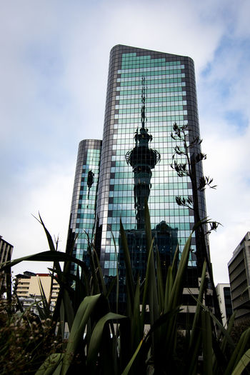 reflection of the auckland tower with some plants Architecture Auckland City Plant Reflection Architecture Building Building Exterior Built Structure City Cloud - Sky Day Low Angle View Modern Nature New Zealand No People Office Office Building Exterior Outdoors Plant Sky Skyscraper Tall - High Tourism Tower The Architect - 2018 EyeEm Awards