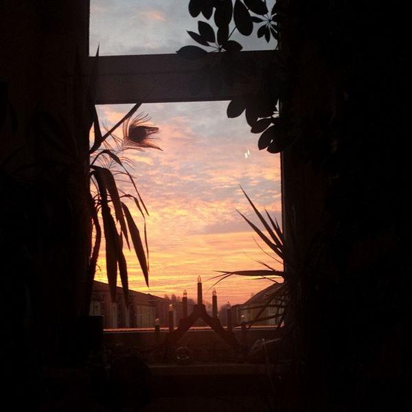 Heutemorgen HimmelÜberBerlin Berlinsky Nofilter sunrise blickausmfenster