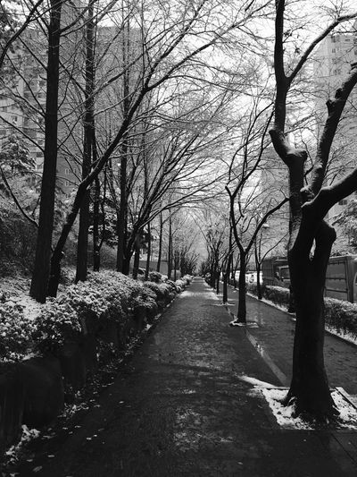 Snow Korea Seoul December Cold Winter Timetogo Snowboarding Seoulstory Wintertime Winter Wonderland By Maengster Like Followme Monochrome Blackandwhite Only