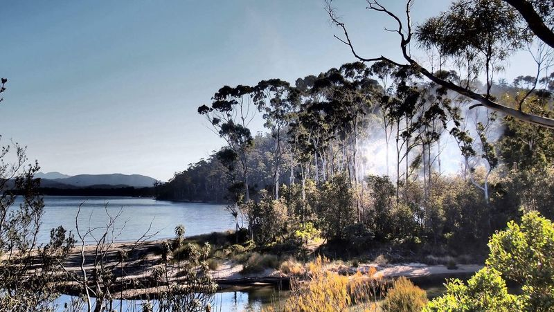 Australia Bushfire Nature Tree Lake Tranquil Scene Beauty In Nature Water Tranquility Scenics No People Outdoors Sky Day Mountain Landscape Forest Clear Sky Branch I came across this gorgeous scene on Tasmania
