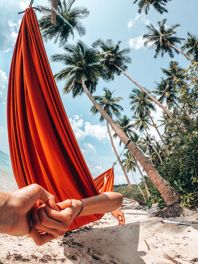 Tree Real People Human Hand Palm Tree Plant Hand Tropical Climate Sky Beach Nature One Person Day Lifestyles Human Body Part Outdoors Palm Tree Hammock Gopro Photography Quality Time