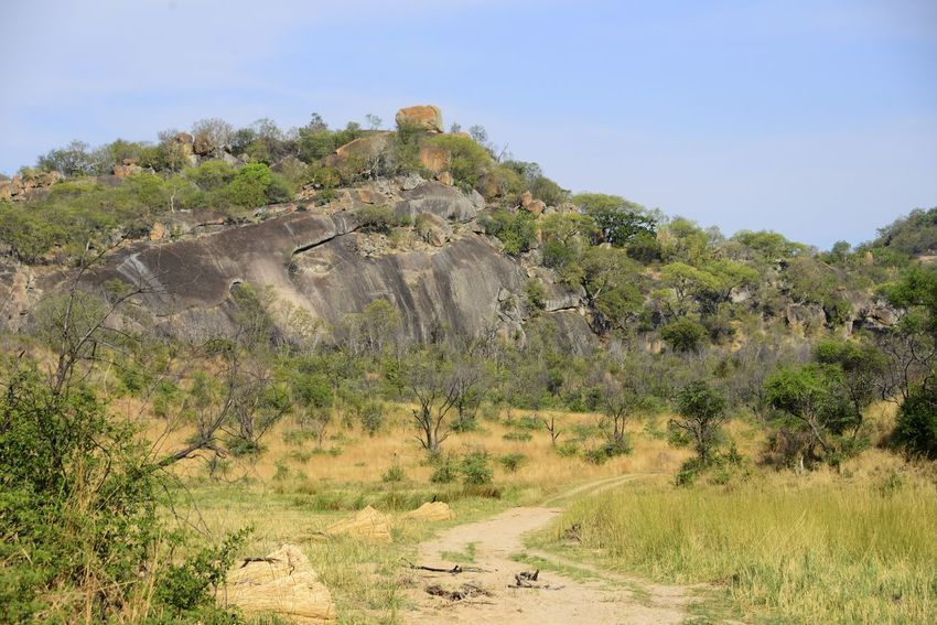 Rhodes Matopos National Park MatopoHills National Park Rhodes UNESCO World Heritage Site Zimbabwe Africa Beauty In Nature Clear Sky Day Landscape Nature No People Outdoors Rhodes Matopos National Park Rock - Object Rock Formation Sky Tranquil Scene Tranquility Tree Unesco