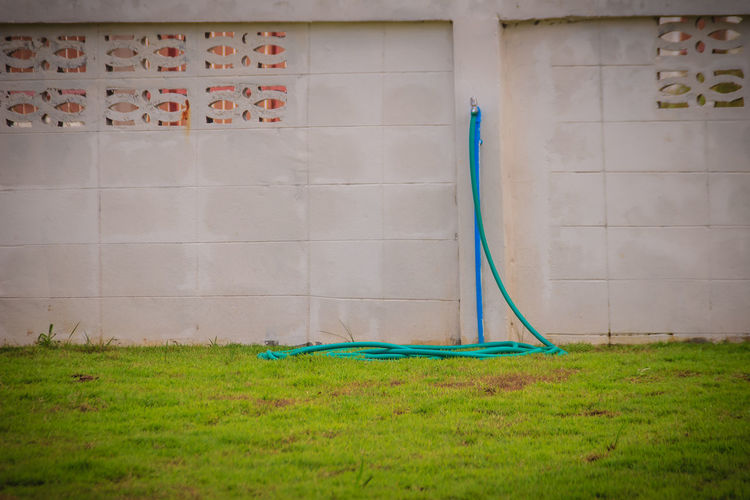 Garden hose on grassy land