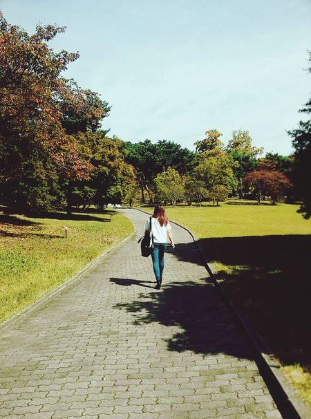 Fall Beauty Korea 아산 여행 현충사 자연 가을