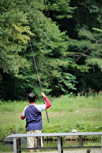 Rear view of boy fishing against trees