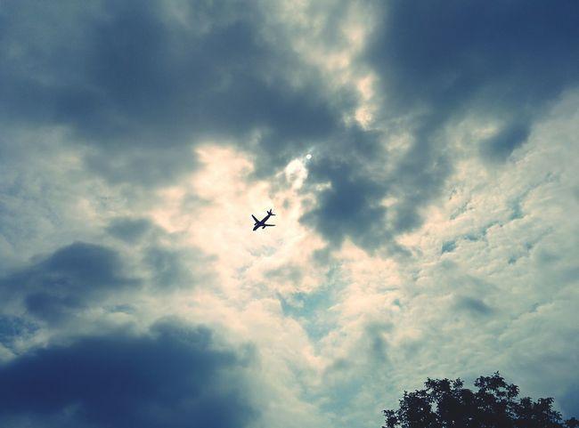 Alternateworld Planes Cloudy Skies