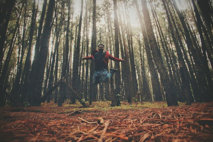 Low angle view of man jumping in forest by trees