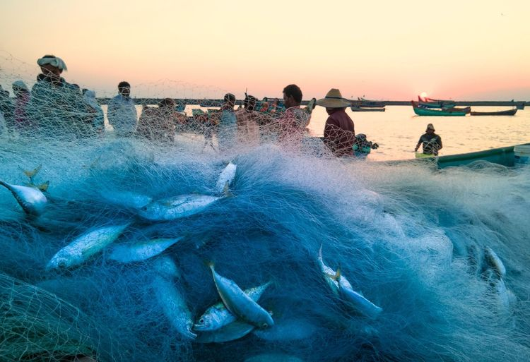 People in sea against clear sky during sunset