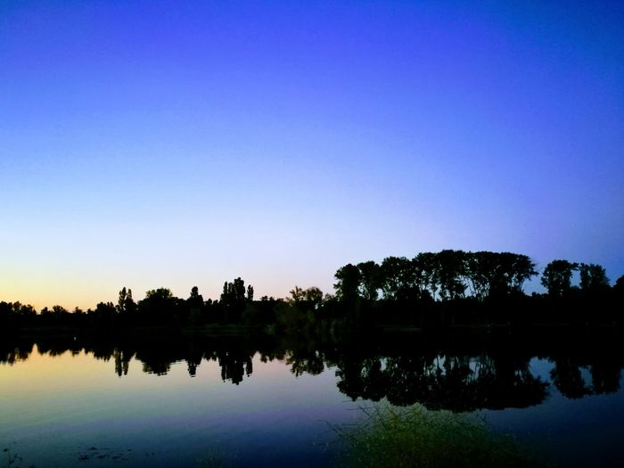 Mystical lake Lake Reflection Tree Water Sky Beauty In Nature Tranquility Sunset HuaweiP9 Francephotographer Frace Bordeux Eyem Nature Lovers  Nature_collection Nature Photography Outdoor Photography Outdoorphotography Endofday Spring2017 Spring Collection No People Dawn Outdoors Silhouette Nature