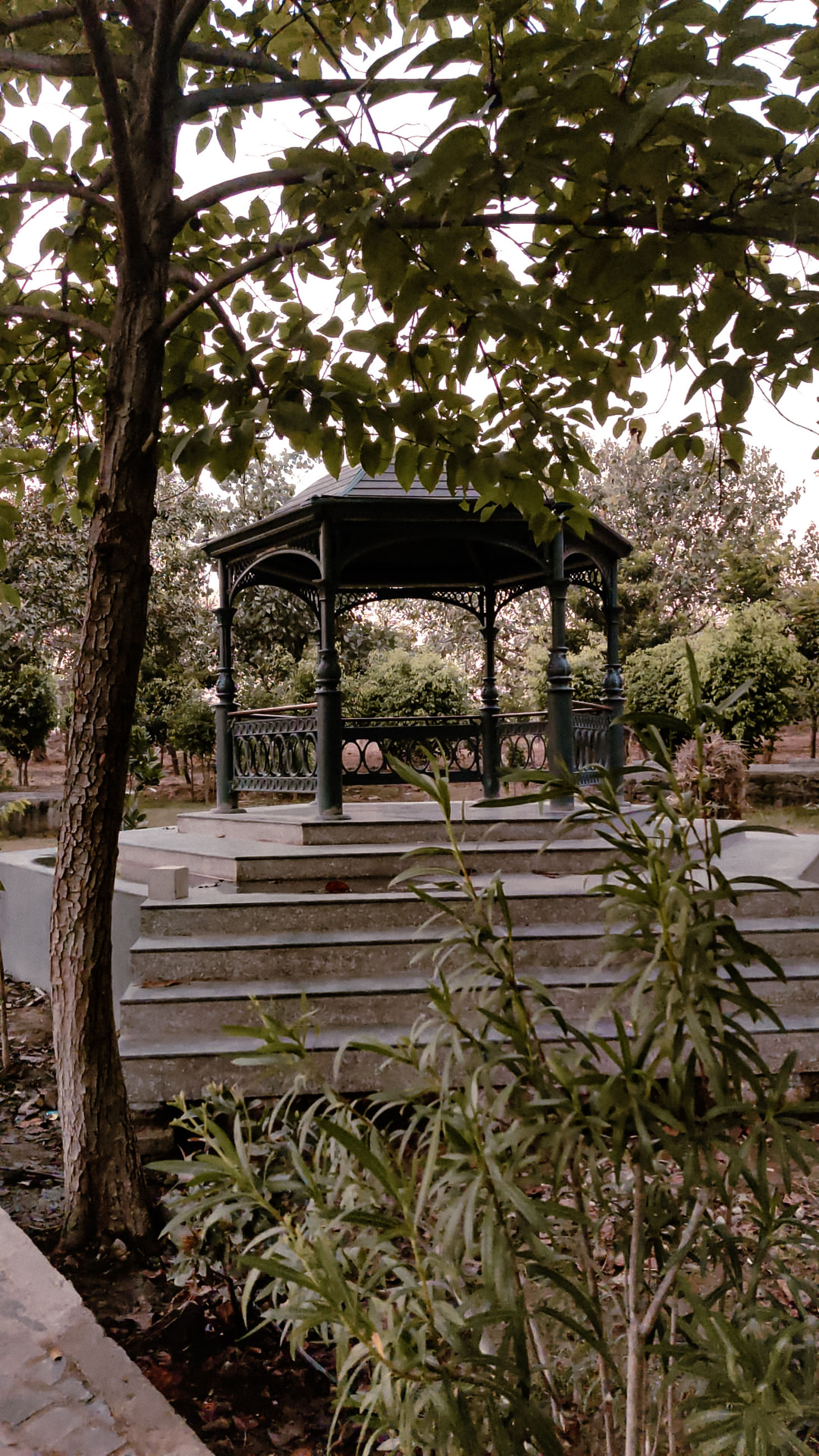 plant, tree, nature, garden, architecture, no people, backyard, growth, day, built structure, outdoors, yard, park, flower, park - man made space, tranquility, outdoor structure, footpath, seat, branch, beauty in nature, bench, wood, water