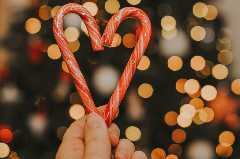 Close-up of hand holding candy canes