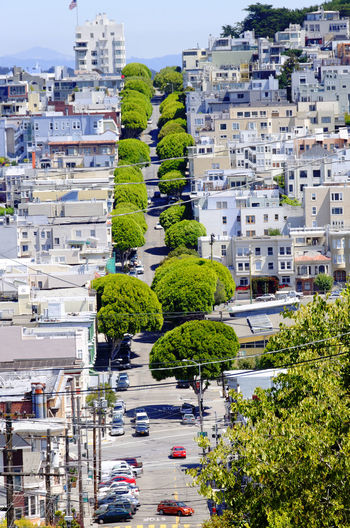 High angle view of trees and buildings in city