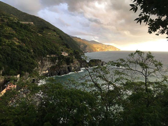 Mountain Beauty In Nature Nature Tree Landscape Sky Outdoors No People Scenics Day coast sea