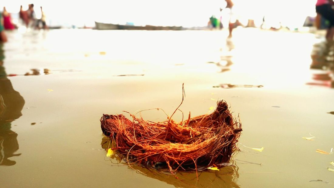 India Cultures Culture And Tradition Indian Culture  Varanasidiaries Varanasi Ghats Water Coconut Sea
