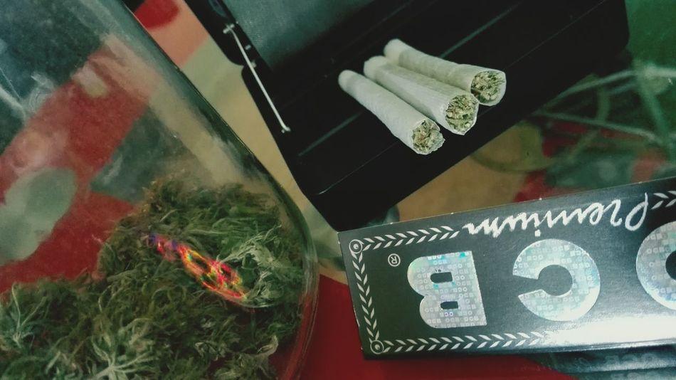 Weed WeedPorn Weed Time Weedlove Weed <3 Weed Smoker WEEDLIFE 420 420 Smoker Marijuana Marihuana Iloveweed