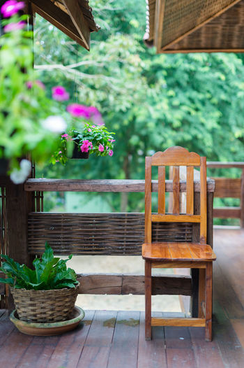 Potted plant on table at porch