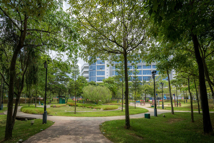Trees and Lamp posts Public Park Building Exterior Day Footpath Grass Green Color Growth Nature No People Outdoors Park Park - Man Made Space Plant Residential District Tree Tree Canopy  Under Trees The Great Outdoors - 2018 EyeEm Awards