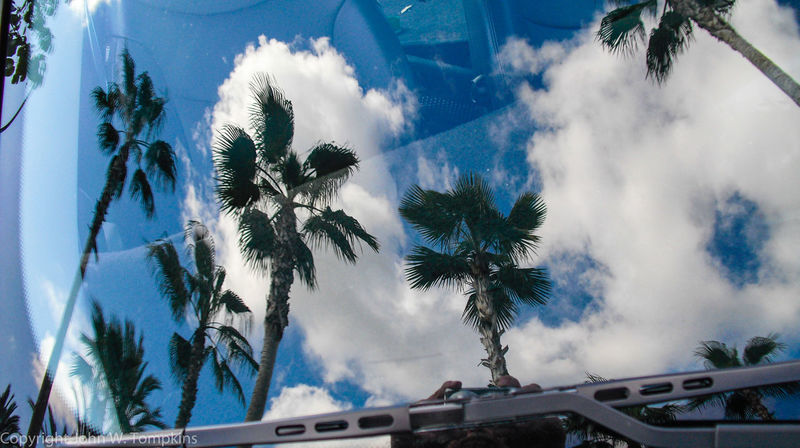 Windshield reflection Beauty In Nature Blue Cloud Cloud - Sky Cloudy Day No People Outdoors Palm Tree Palm Trees Reflections Sky Sunny Tranquil Scene Tranquility Weather Windshield Shots