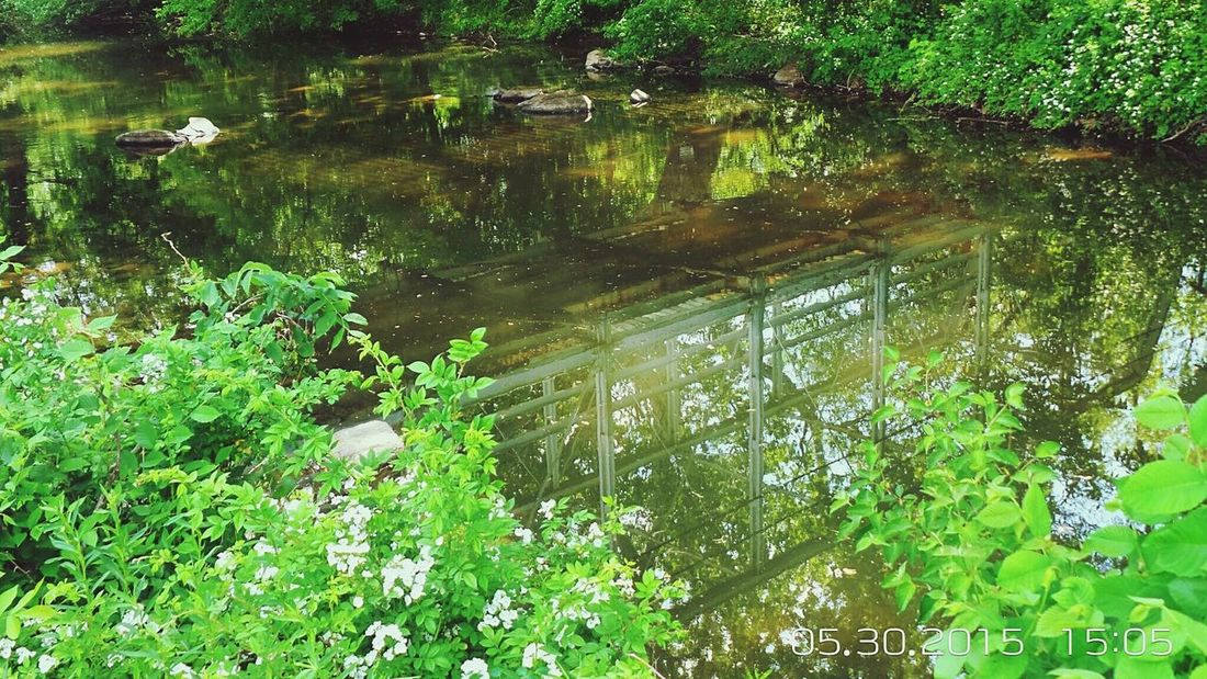 This is a reflection in a creek, of an old bridge - built in the 1880's. It is located in Montgomery County, Pennsylvania. Just up the street from my house. Creative Light And Shadow Water Reflections Old Bridge Reflections Eyem Nature Lovers  Creek Beautiful Nature Relaxing EyeEm Nature Lover Nature On Your Doorstep