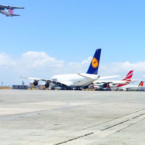 Big birds, blue sky Blue Wave From Where I Stand Eyeem Philippines Aviation Aircraft Airbus Airbus A380 Enjoying Life Showcase April